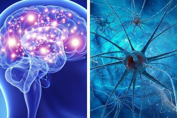 Infografìa: Hábitos que matan las neuronas y afectan la